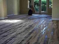 Best Hardwood Floors For Dogs - Flooring Ideas Home