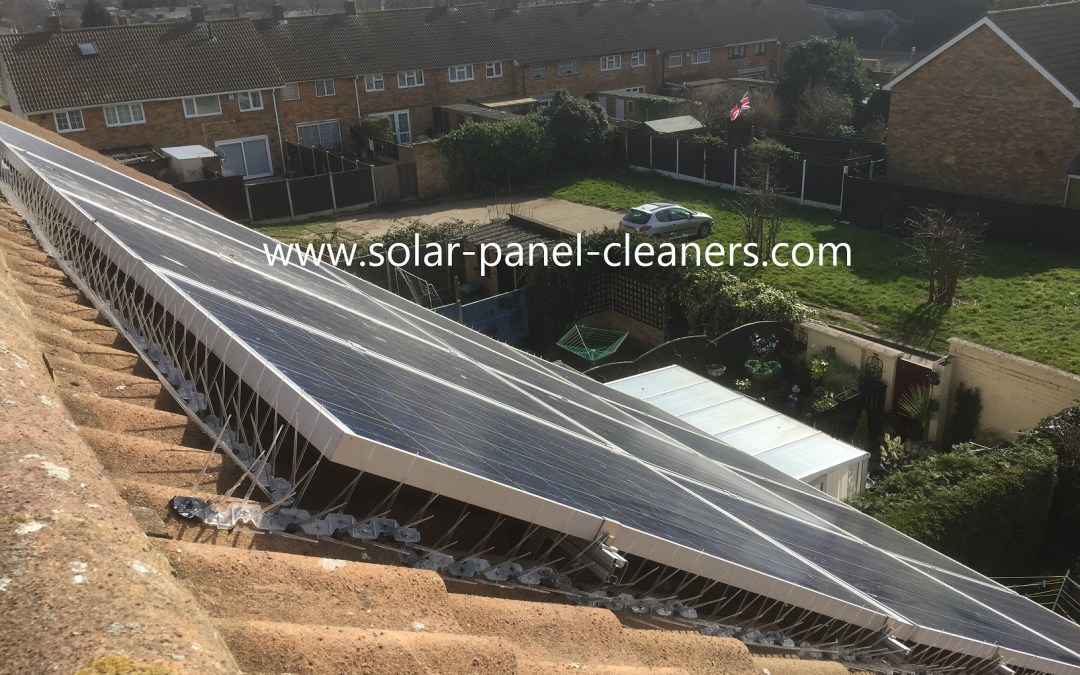 Solar Panels, Bird Protection, Proofing And Deterrents