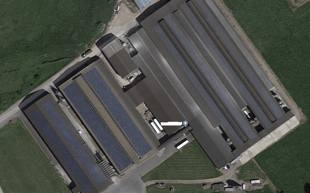 Cracking Solar Panel Cleaning Results On Yeovil Chicken Farm