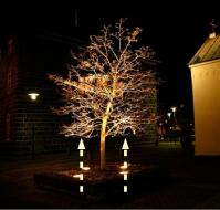 Outdoor Up Lighting For Trees. fireplace tips for choosing ...
