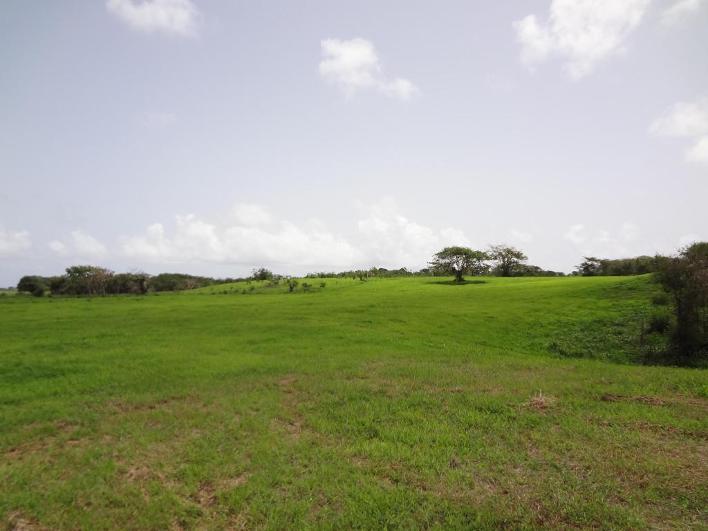 barbados-10MW-solar-farm