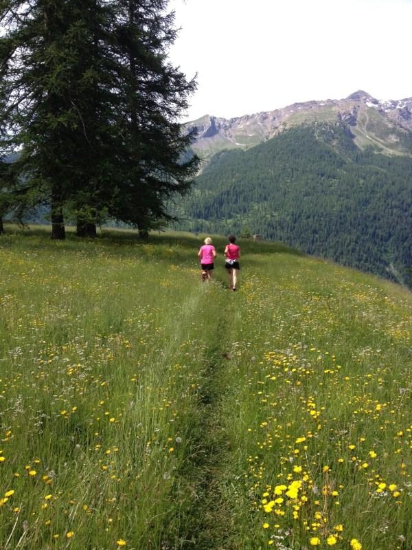 Trail massif des écrins