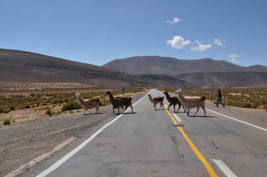 Road Trip Tilcara Argentine