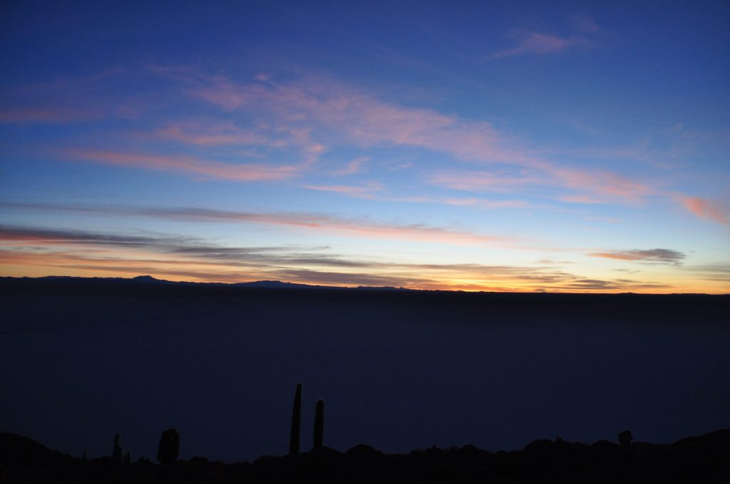 Île aux Cactus Uyuni