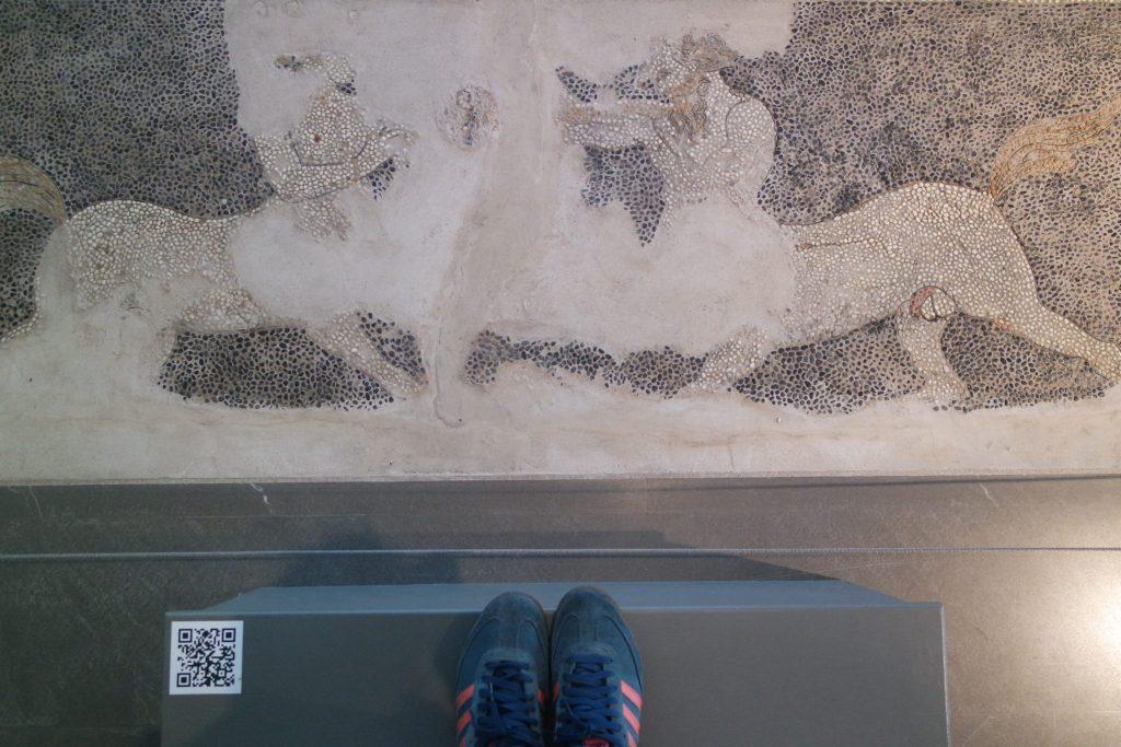 musée archéologique Pella