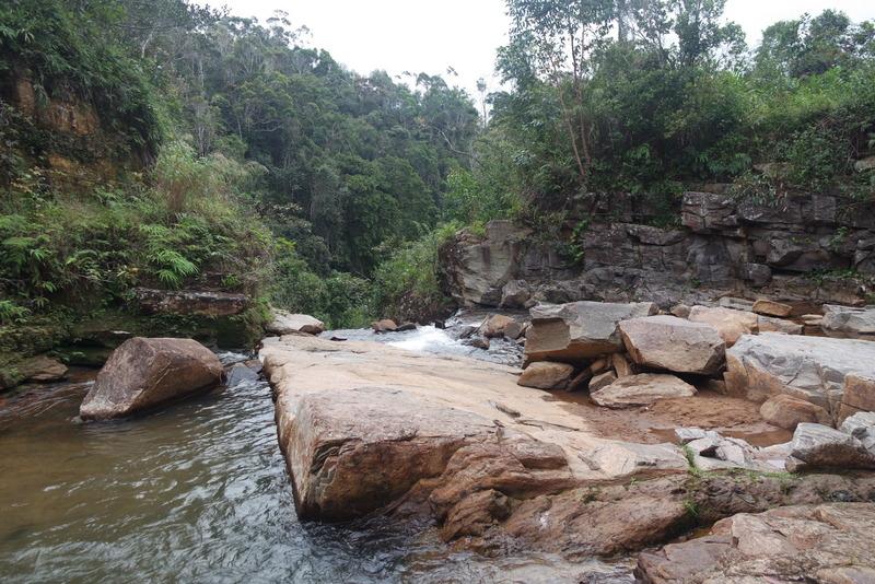 Randonnées forêt Vohimana Madagascar