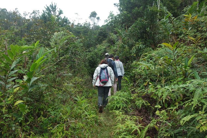 Randonnée Vohimana Madagascar