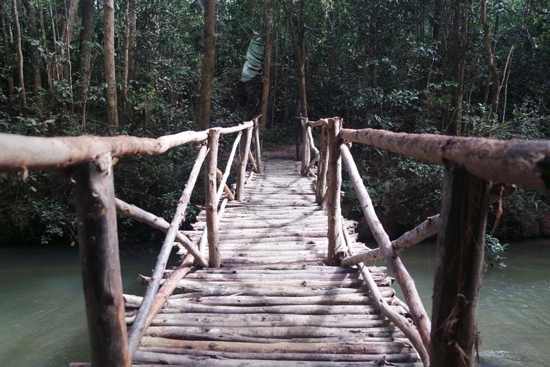 Visiter Réserve Analamazaotra