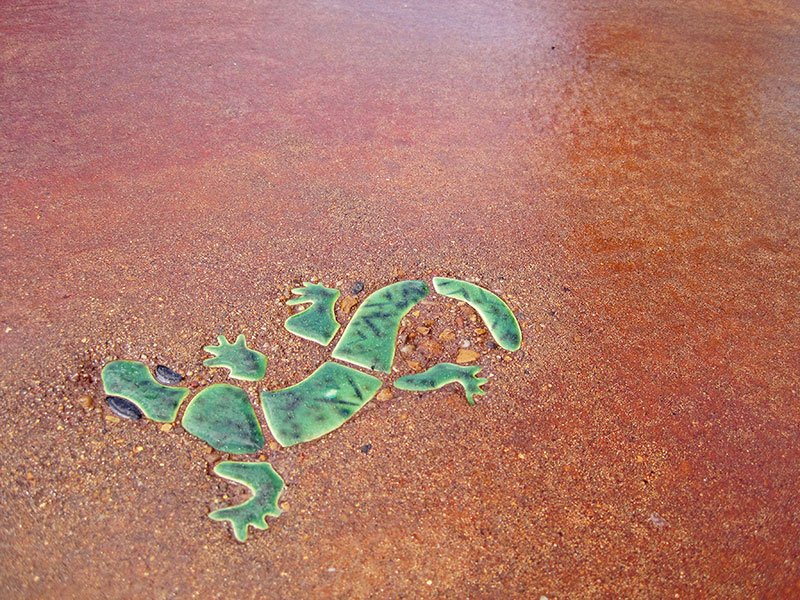 close up of lizard embedded in stained concrete pool deck