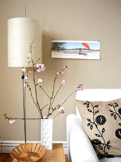 Wohnzimmer Wandfarbe Inspirationen und Tipps  SoLebIchde