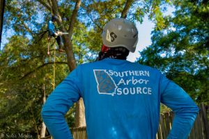 Southern Arbor Source - Best Tree Service Conyers, Covington, Oxford, Decatur, Rockdale, Newton