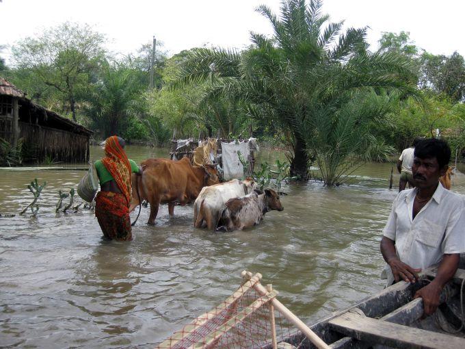 Bangladesh projet pilote GRD