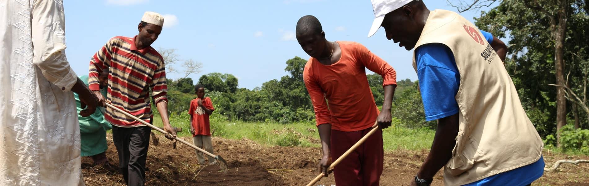 Sécurité alimentaire Cameroun
