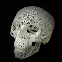 This 3D Printed Skull Will Rock You. Crania Anatomica Filigre by Joshua Harker