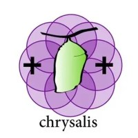 The Chrysalis Project Puts 3D Design on the Web in a Very Cool Way.