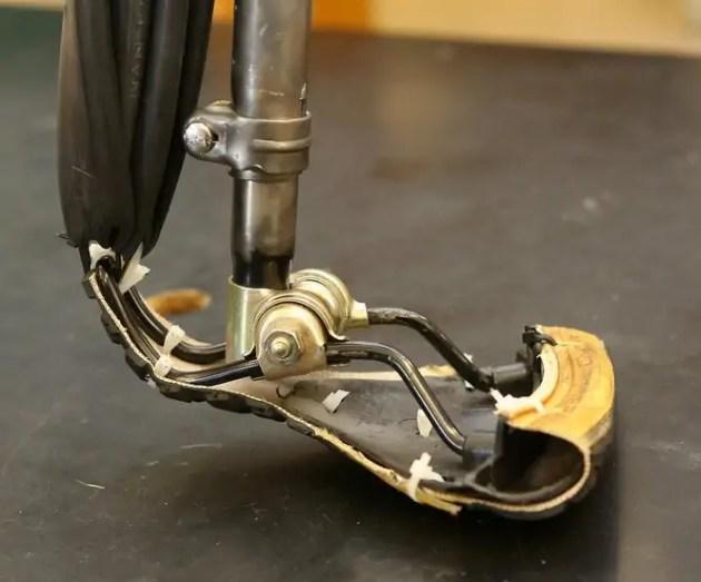 cycle-leg-brantley-al-06