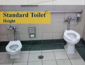 standard toilet height
