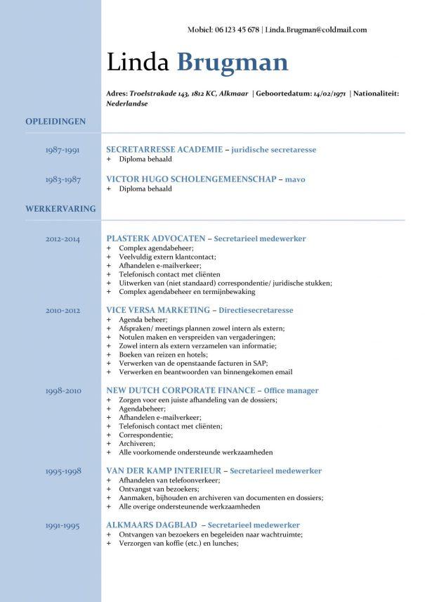 CV Voorbeeld Newport 1/2, gratis curriculum vitae, professioneel, kantoorbaan cv