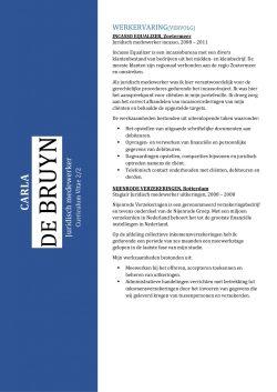 CV Sjabloon Bradford 2-2 (2 paginas)