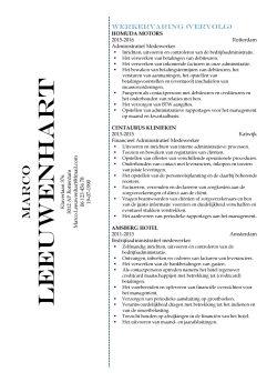 CV Sjabloon Greenwich 2-2 (2 paginas)