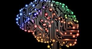 proceso de aprendizaje memoria largo plazo