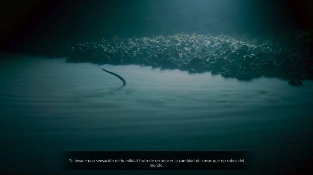 Beyond-Blue-screenshots-lago-de-salmuera