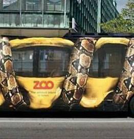 mejores-anuncios--autobus-del-zoo