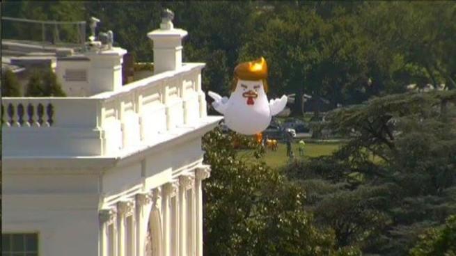 Pollo inflable con apariencia de Donald Trump aparece cerca de la Casa Blanca