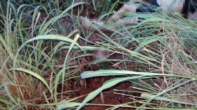 Encuentran el cadáver decapitado de un hombre en Ciudad Barrios