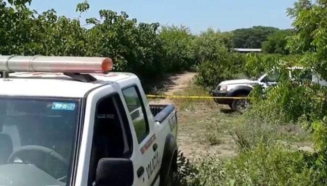 Asesinan a hombre en el cantón El Zarzal de Santo Domingo de Guzmán