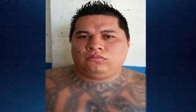 Pandillero que tenia en su poder varias porciones de droga es capturado en San Salvador