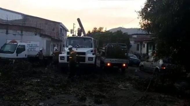 Vehículos destruidos y zonas sin energía eléctrica tras la caída de árboles y poste