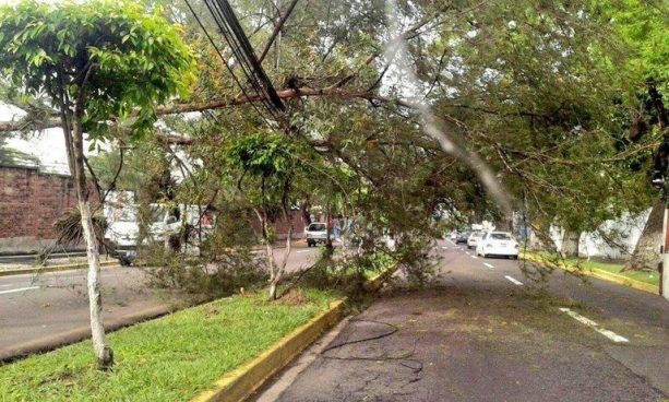 Protección Civil emite aviso por el ingreso de vientos acelerados