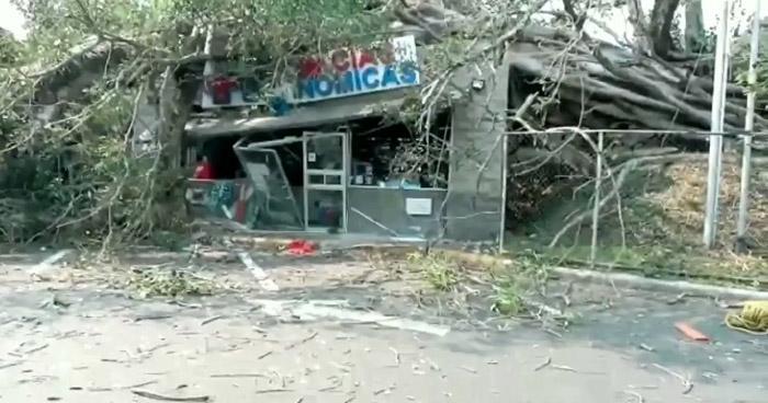 Árbol cae sobre farmacia en Bulevar Holcim, Antiguo Cuscatlán