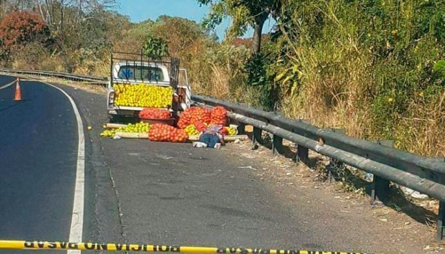 Joven vendedor de naranjas muere tras ser atropellado mientras arreglaba su venta en carretera Panamericana