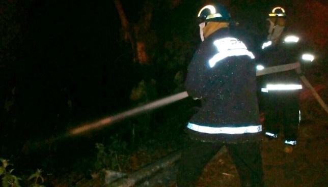 Cabezal cae al fondo de un barranco y se incendia, el conductor murió en su interior