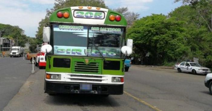 Anciana muere al ser atropellada por motorista de bus Ruta 205