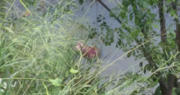 Encuentran el cadáver de una mujer flotando en una poza de Mejicanos