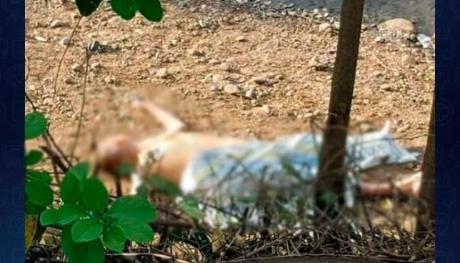 Encuentran cadáver de un hombre a la orilla del Río Grande de San Miguel