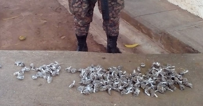 Incautan más de 200 porciones de droga a un distribuidor de San Miguel