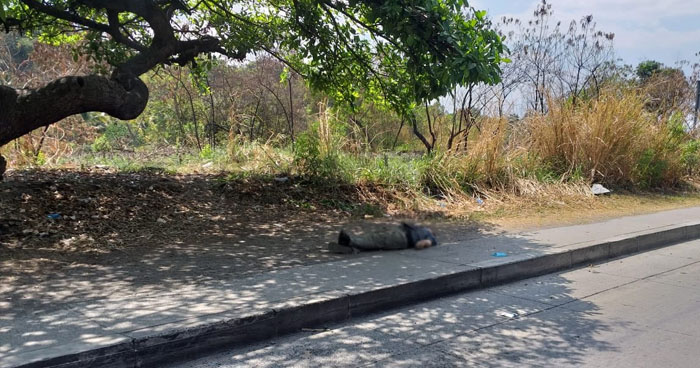Asesinan a un vendedor de frutas en carretera Los Chorros