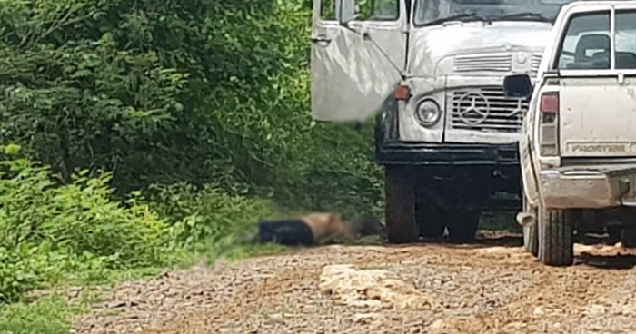 Matan a hombre que transportaba arena en un camión en Moncagua, San Miguel
