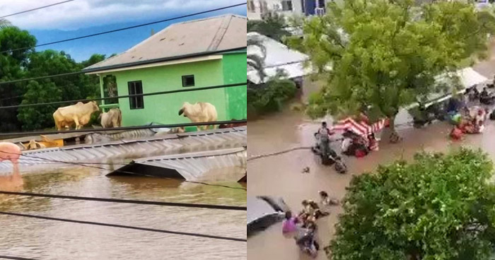 Eta provoca 11 muertes, destrucción y deja casas bajo el agua en Honduras
