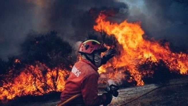 Asciende a 24 la cifra de muertos tras un incendio en Portugal