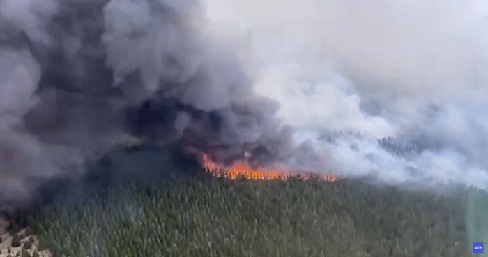Incendio forestal al sur de Argentina ha consumido más de 6,500 hectáreas de bosque nativo
