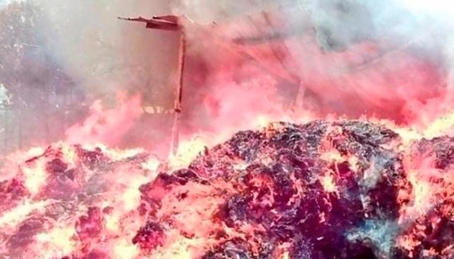 Bodega donde guardaban papel para reciclar se incendia y afecta viviendas en San Pedro Masahuat