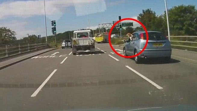 VIDEO: Un perro asoma la cabeza por la ventana de un auto en marcha y pasa esto