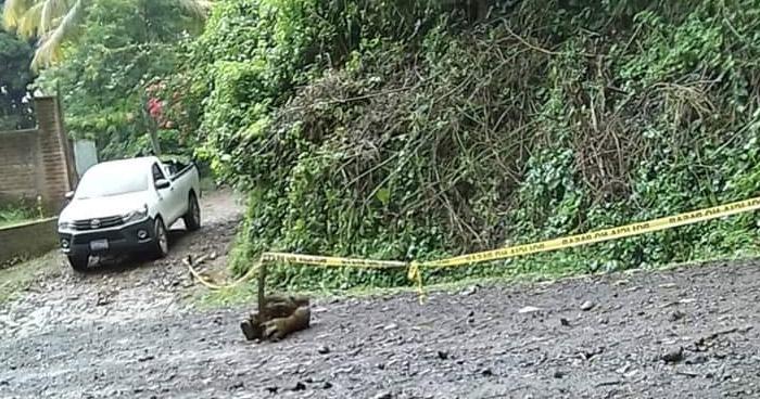 Niña muere ahogada tras ser arrastrada por corriente de quebrada en San Miguel