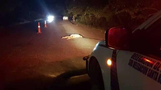 Una joven murió al ser atropellada en carretera Ruta Militar