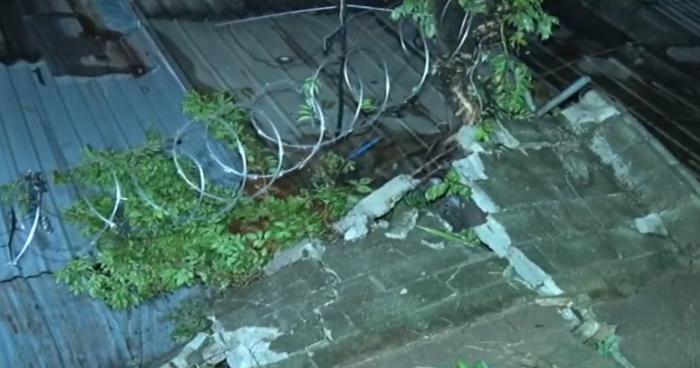 Muro colapsó y cuatro viviendas resultaron afectadas tras lluvia de anoche en Apopa